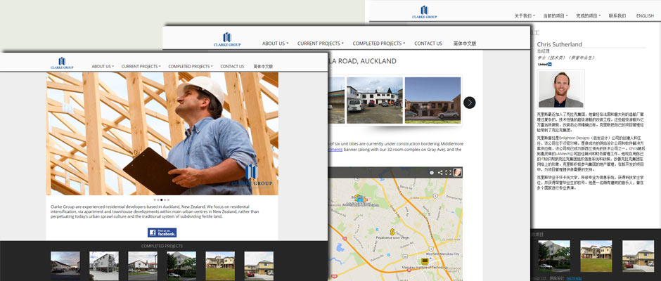 Clarke Group Website