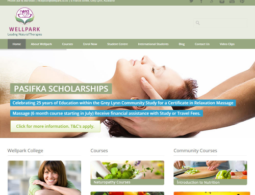Wellpark College Website